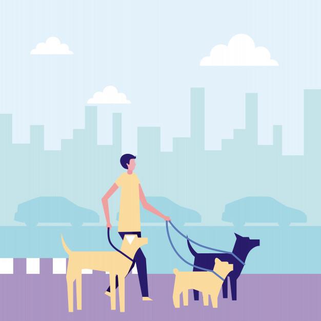 ganhe dinheiro nos finais de semana cuidando de cachorros
